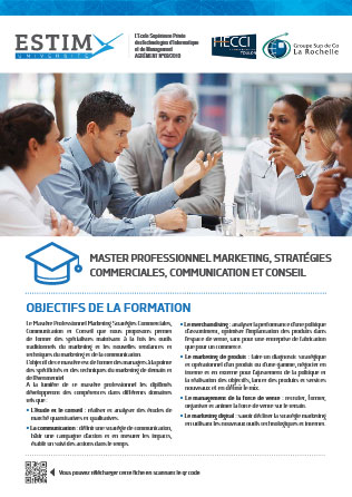 Master en Management-Marketing stratégie et communication