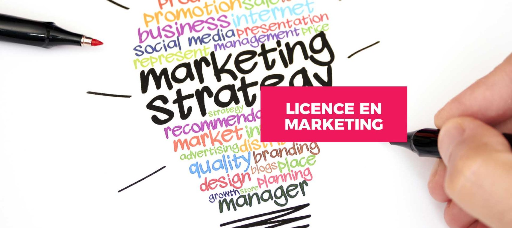 Licence en marketing